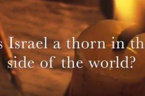 mtm-israel-thorn