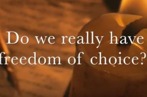 mtm-freedom-of-choice