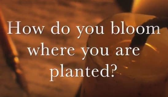VIDEO: Moments that Matter – How Do You Bloom Where You Are Planted?