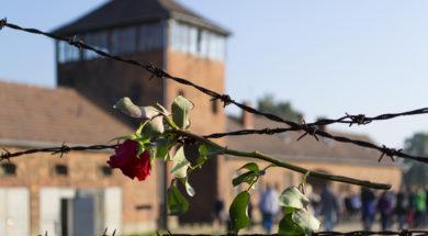 Auschwitz building