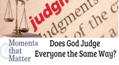 mtm-judge-everyone-the-same