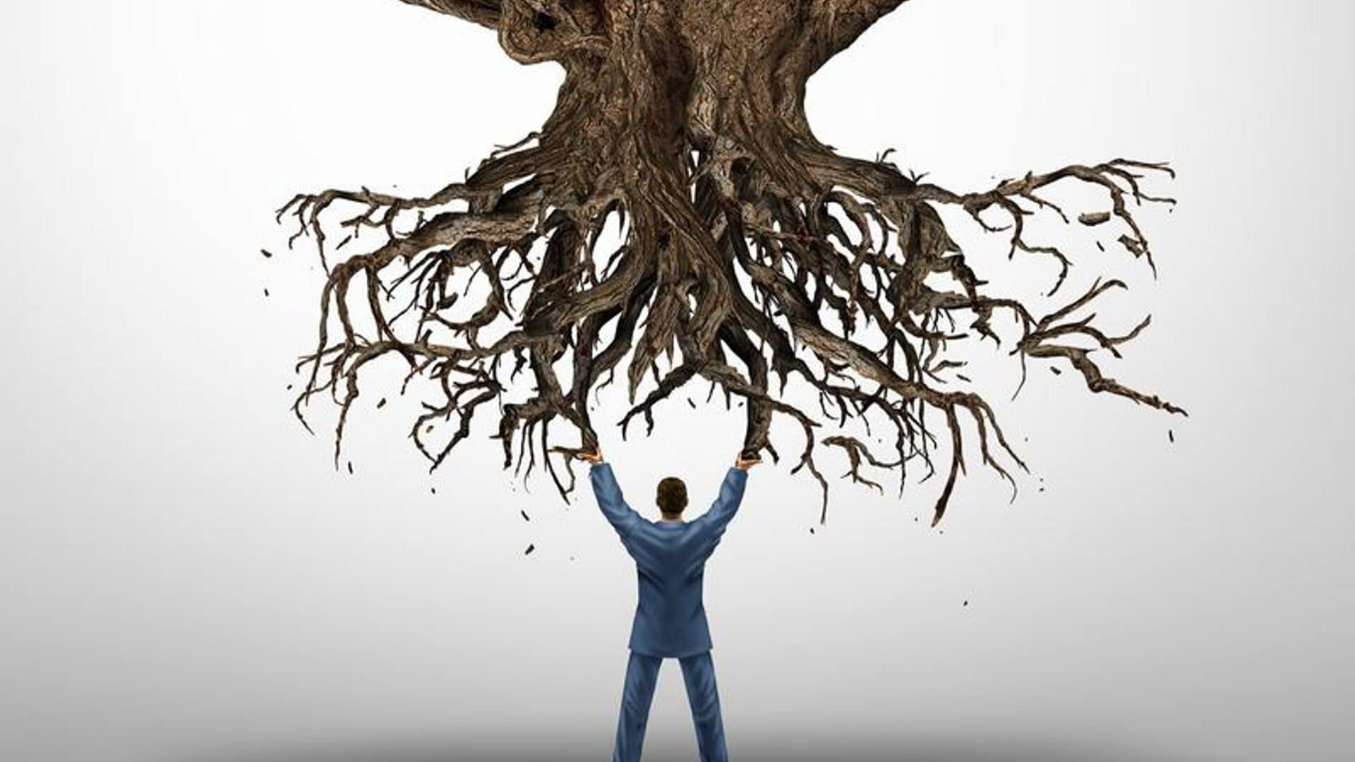 How Do You Handle Being Uprooted in Your Life?