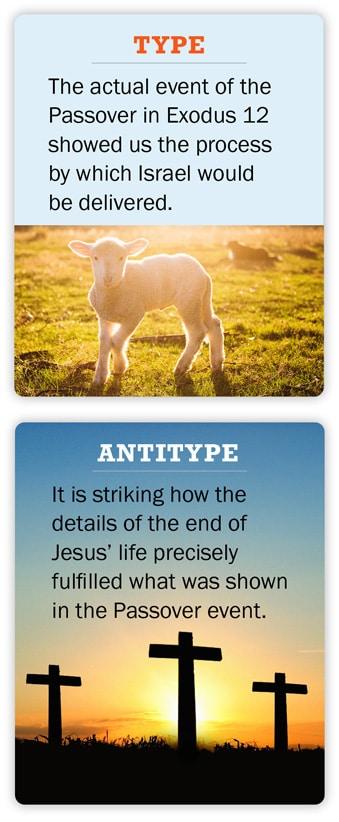 Type vs Antitype